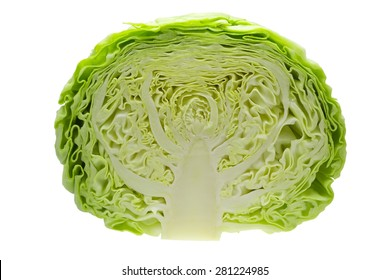 Cabbage cut in half isolated on white background