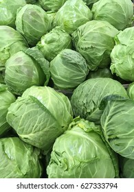 cabbage from field. cabbage background. cabbage harvest.