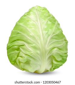 Cabbage isolated on white with clipping path.
