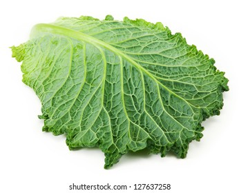 cabbage leaf isolated on white background