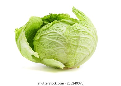 a cabbage on a white background