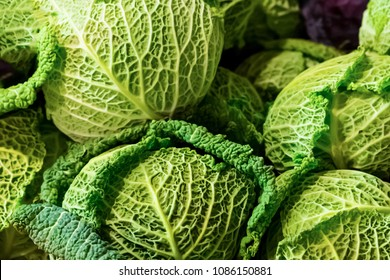 cabbage savoy kale green openwork green leaves many round fruits close-up vegetable base