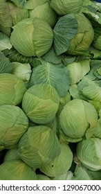 cabbages lined up for sale in the market