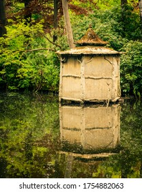 Cabbin in the woods: an old shed at the fishpond.