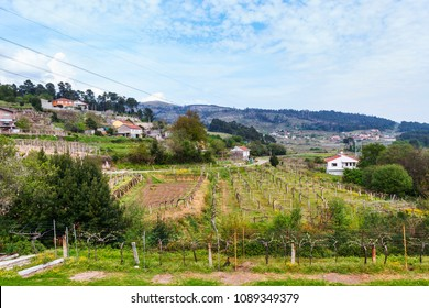 Cabeiras rural village in Arbo town, Galicia, Spain