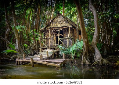 Cabin in the forest and mangrove on a river bank at the indian river in Dominica, house is used in pirates of the caribbean movie as calypso's house. altered with computer graphics from its original