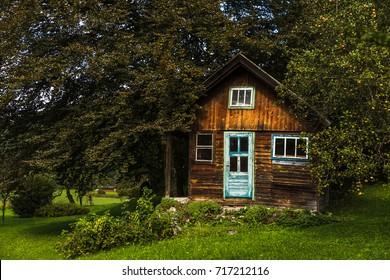 cabin in a small garden
