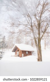 Cabin in the snowy forest