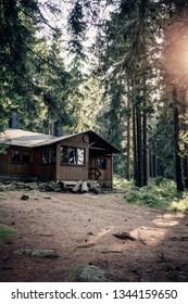 Cabin in the woods, Portrait