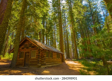 Cabin in the Woods, Yosemite National Park, California, USA.  Mariposa Grove, sequoia trees.