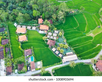 Cabins and rice terraces seen from above with a drone in Ubud, Bali, Indonesia