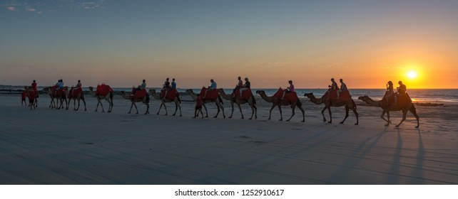 Cable Beach, Broome / Australia - 11/22/2014 People riding Camels on Cable Beach with a beautiful sunset.