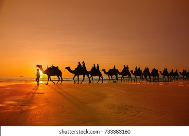 Cable beach, camels ride at sunset, Broome, Australia