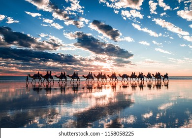 Cable Beach, Western Australia. A very unique sunset featuring the famous camel train and reflections from the extreme low tide.