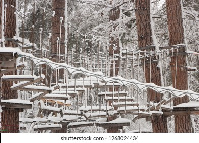 Cable park in the winter forest of coniferous forest, snow on trees and ropes