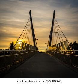Cable stay pedestrian bridge over highway and wetlands, Eugene, Oregon.