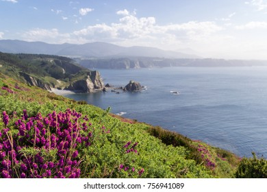 Cabo Busto - Asturias
