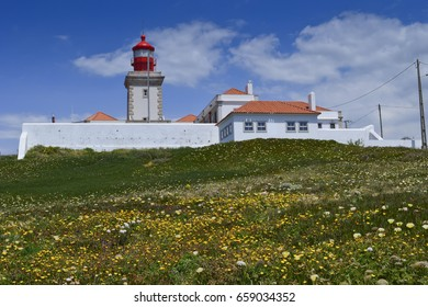 The Cabo da Roca lighthouse with flowers in the front