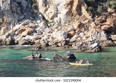 Cabo San Lucas/MX: March 17, 2017 – Man and woman paddle yellow canoe past pelicans on rocky outcrop near rock formations at Cabo San Lucas Mexico.