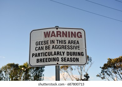 Caboolture, Australia. July 2017 - editorial use only: Sign warning of aggressive geese in ponds at Apex Park