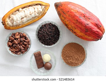 cacao fruit, cacao beans, cacao nibs, cacao powder and chocolate