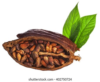 Cacao pod and beans with leaves isolated on a white background
