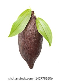 Cacao pod isolated on white background