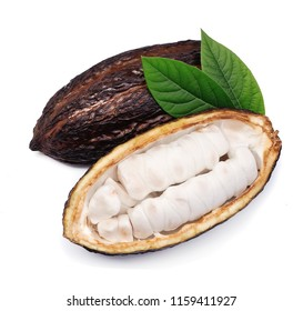 Cacao pod with leaves closeup on white backgrounds.