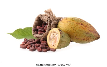 Cacao pods, butter and beans and cacao powder with leaves isolated on white background