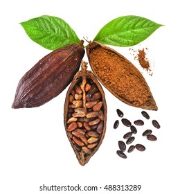 Cacao pods and cocoa beans and cacao powder with leaves isolated on white background