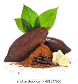 Cacao pods, cocoa butter, cocoa beans and cacao powder with leaves isolated on white background