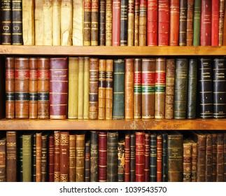 Caceres, Spain - June 10, 2013: Antique books,  bookshelves inside a bookstore