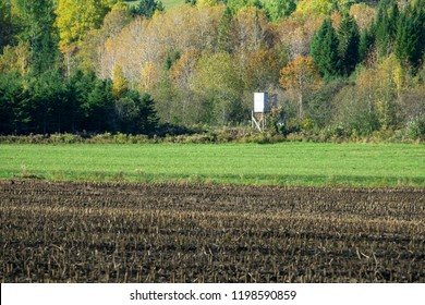 A cache for deer hunting in the fields