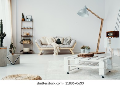Cacti and wooden table in white modern living room interior with sofa next to lamp. Real photo