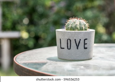 Cactus in cement pot written LOVE for decoration, gift, or valentine concept.
