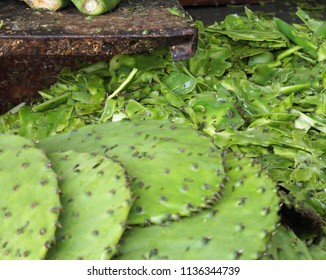 Cactus in farmer's market stall