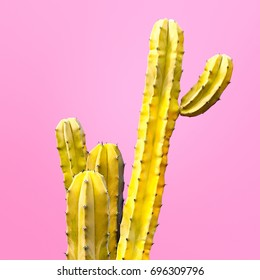 Cactus Fashion Set Design. Minimal Stillife. Trendy Bright Colors. Yellow Mood on Pink background