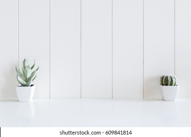Cactus flowers vase on desk and white wooden background