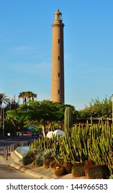 Cactus garden with varied vegetation and road next to emblematic Maspalomas lighthouse, a splendid sunny day of radiant blue sky, Gran canaria, Canary islands, Spain