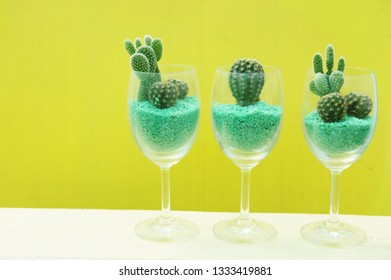 Cactus in glass with colorful background