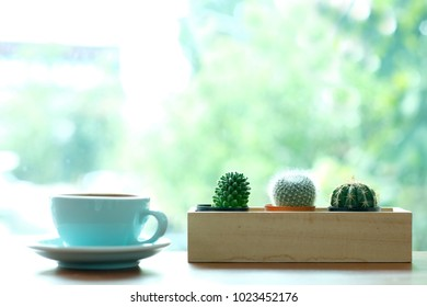 Cactus and green coffee cup on table by the window and blur green nature background with copy space, succulent houseplant trendy