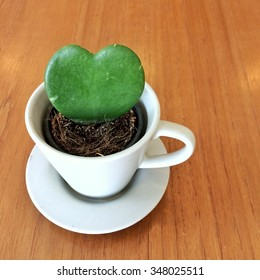 Cactus heart in a cup.