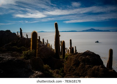 Cactus Island Incahuasi with a 4x4 car driving on the salt flats and mountains in the background, a 4x4 car driving Scenery of during dessert crossing in Uyuni Salt Flats in Bolivia.