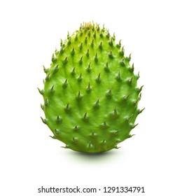 Cactus leaf isolated on white background