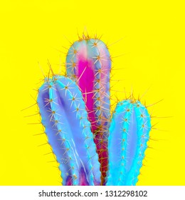 Cactus lovers. Minimal concept.  Cactus colorful fashion art
