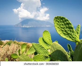 Cactus on the island of Lipari shot towards another island with clouds.