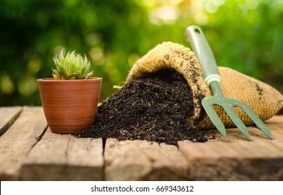 cactus on plant pot with fertilizer bag  over green background, Summer garden concept