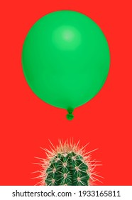 Cactus plant on a bright red background with above it floating a green balloon as a concept for something which could go wrong fast easily