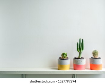 Cactus plants in colorful modern geometric concrete planters on white shelf isolated on white background with copy space. Beautiful painted concrete pots.