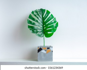 Cactus pot. Beautiful painted concrete pot. Green Tropical palm leaf in modern cubic concrete planter on white wooden shelf on white wall background.
